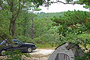 One of the campsites at Horton's Camping Resort on Cape Cod.